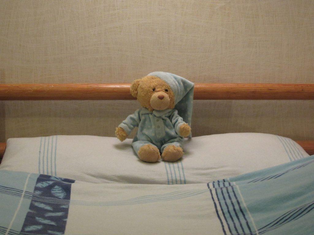 teddy-2090502_1920