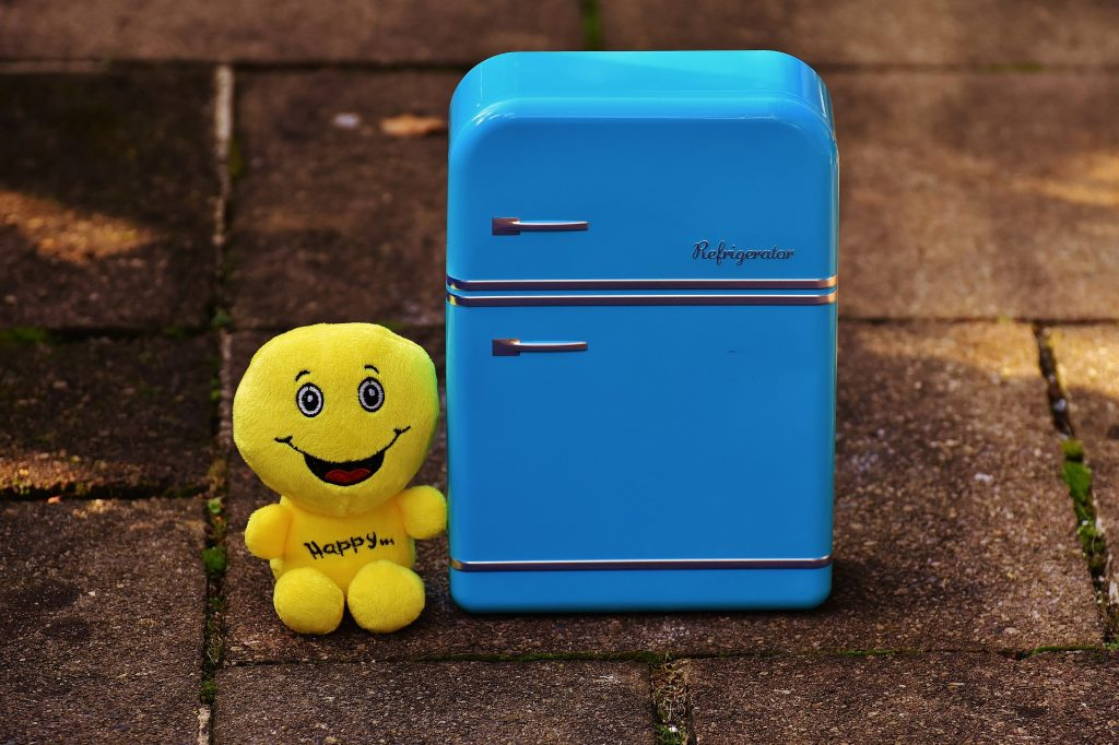full-fridge-1729678_1920