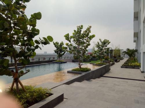 Disewakan Apartment Type Studio Di Tree Park City Tangerang Selatan